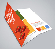 Cheap Folded Leaflet printing at just £32.50 - Printwin